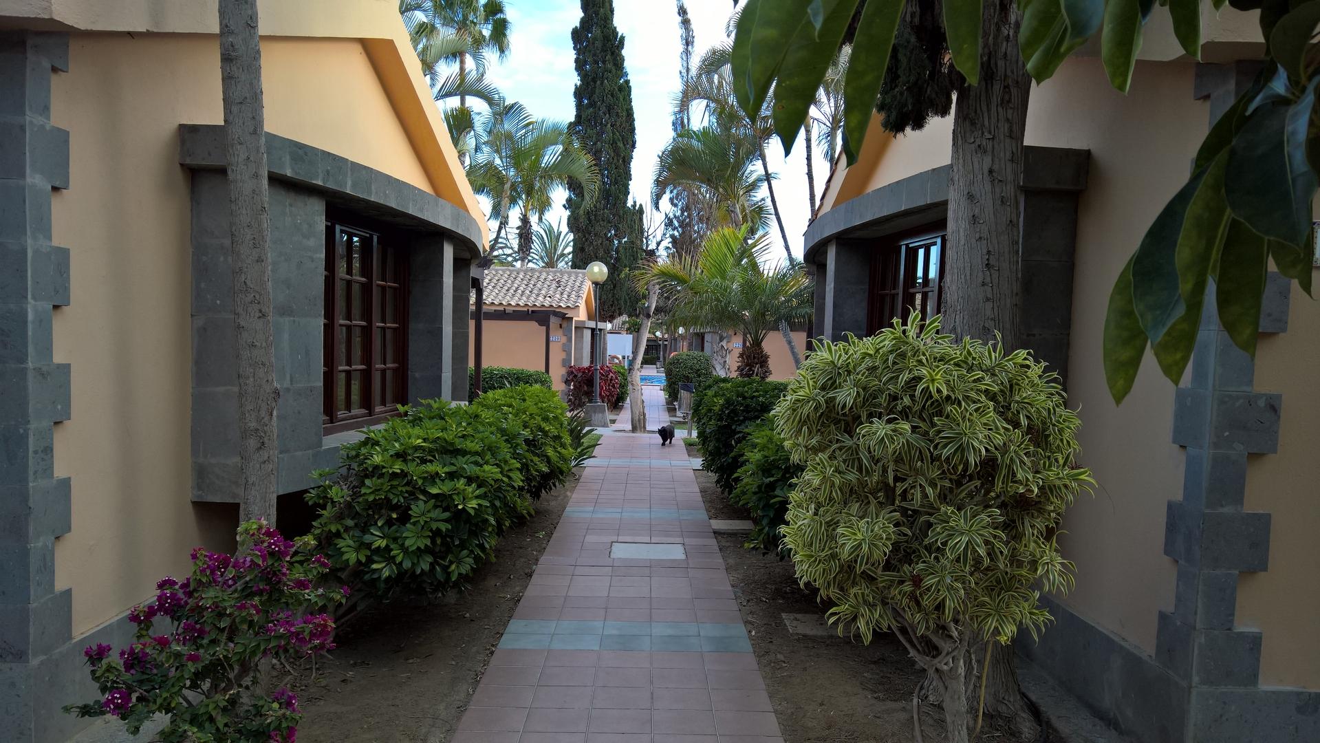 Unsere Hotelanlage, samt Hotelkatze