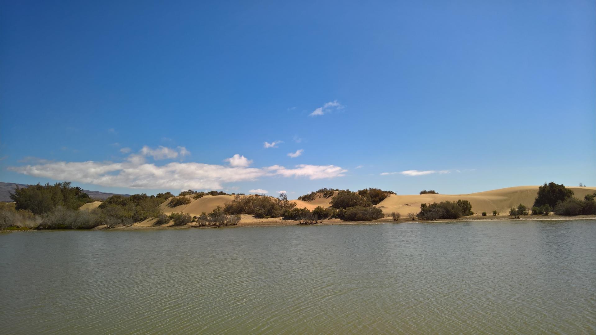 Dünen von Maspalomas